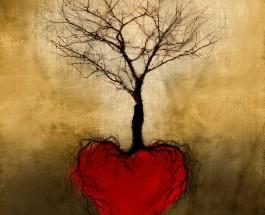 Cuando la raíz es la razón y la fe